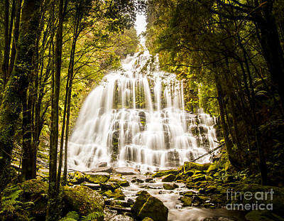 Tasmanian Waterfalls Print by Jorgo Photography - Wall Art Gallery