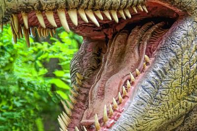 Photograph - Tasteetyrannosaurus Dinosaur by LeeAnn McLaneGoetz McLaneGoetzStudioLLCcom