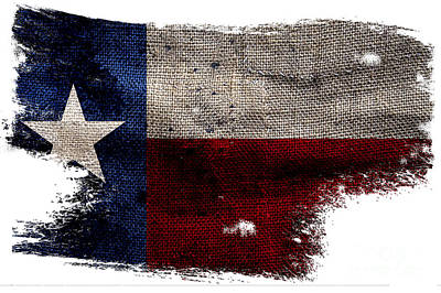 Tattered Lone Star Flag Art Print