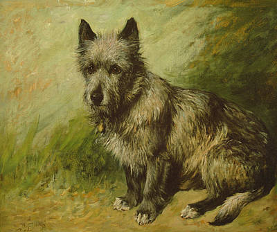 Mutt Painting - Tatters by John Emms