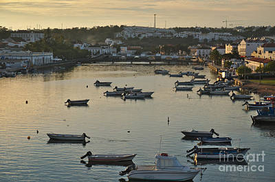 Tree Photograph - Tavira Sunset by Angelo DeVal