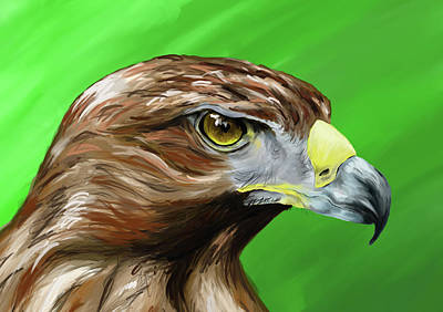Painting - Tawny Eagle by Jennifer Phillip