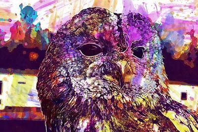 Digital Art - Tawny Owl Strix Aluco Owl Bird  by PixBreak Art