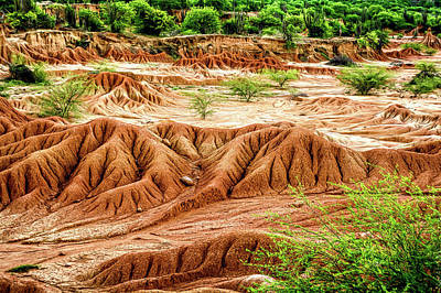 Photograph - Tatacoa Desert by Maria Coulson