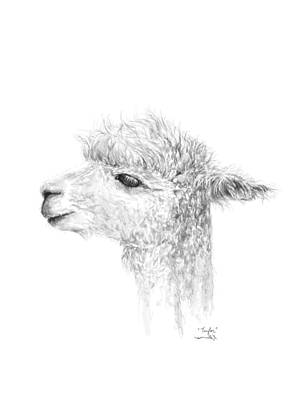 Animals Drawings - Taylor by K Llamas