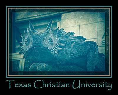 Frogs Photograph - Tcu Horned Frog Blue Poster by Joan Carroll