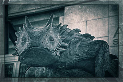 On Trend At The Pool - TCU Horned Frog Cobalt by Joan Carroll