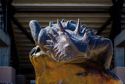Photograph - Tcu Horned Frogs 102716 by Rospotte Photography