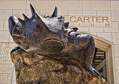 Carter Photograph - Tcu Superfrog - No. 4 by Stephen Stookey