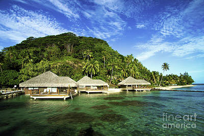 Overhang Photograph - Te Tiare Resort by David Cornwell/First Light Pictures, Inc - Printscapes