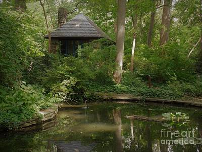 Photograph - Tea House by Daun Soden-Greene