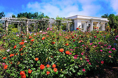 Photograph - Tea House In The Rose Garden by Lynn Bauer