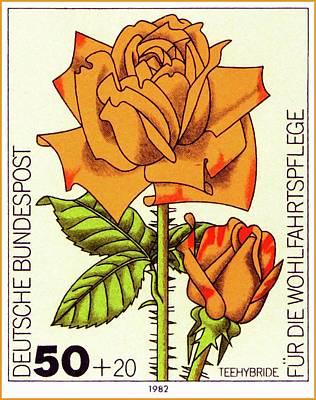 Floribunda Painting - Tea Hybrid Garden Rose by Lanjee Chee