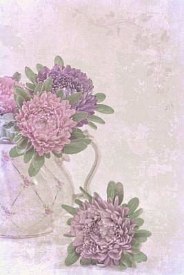 Aster Photograph - Tea Pot Asters by Sandra Foster
