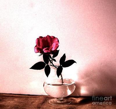 Tea Rose Art Print