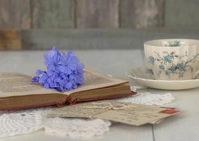 Photograph - Tea Time by Kim Hojnacki