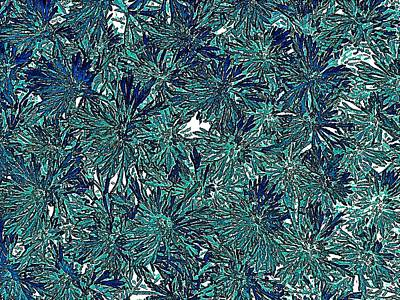 Digital Art - Teal Floral Abstract by Doug Morgan