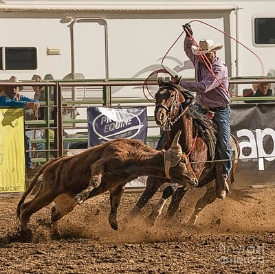 Team Roping Photograph - Team Roping At Wickenburg Senior Pro Rodeo by Priscilla Burgers