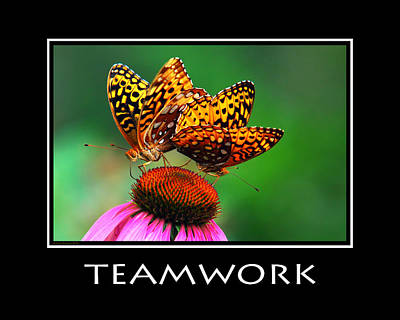 Photograph - Teamwork Inspirational Motivational Poster Art by Christina Rollo