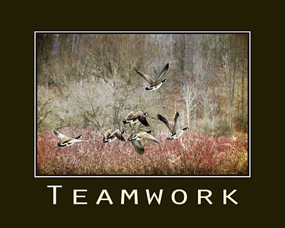 Geese Mixed Media - Teamwork Inspirational Poster by Christina Rollo