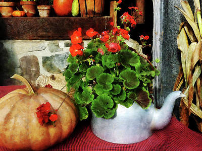 Teapot Filled With Geraniums Art Print by Susan Savad