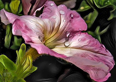 Digital Art - Teardrops In The Rain by Jim Pavelle