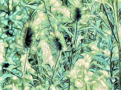 Photograph - Teasel In Abstract - Blue Green by Leslie Montgomery