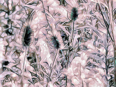 Photograph - Teasel In Abstract - Rose by Leslie Montgomery
