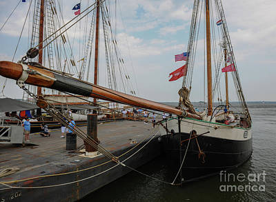 Photograph - Tecla Tall Ship Bow by Dale Powell
