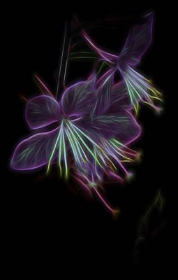 Photograph - Tecno Floral by Debra Forand