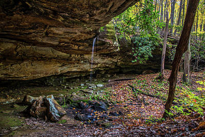 Photograph - Tecumseh Falls by Andy Crawford