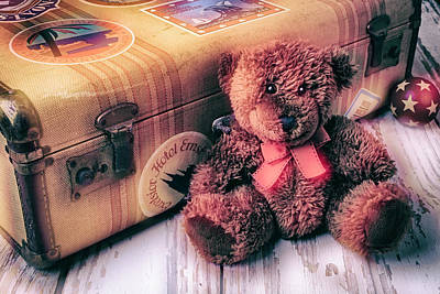 Photograph - Teddy Bear And Suitcase by Garry Gay