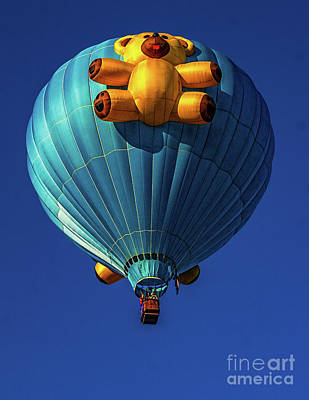 Photograph - Teddy Bear Balloon by Nick Zelinsky