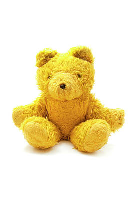 Photograph - Teddy Bear by Fabrizio Troiani