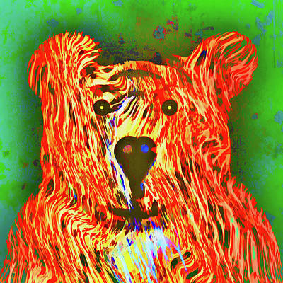 Photograph - Teddy Bear by John M Bailey