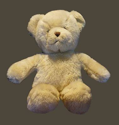 Photograph - Teddy Bear by Pamela Walton