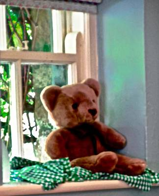 Photograph - Teddy In The Window by Stephanie Moore