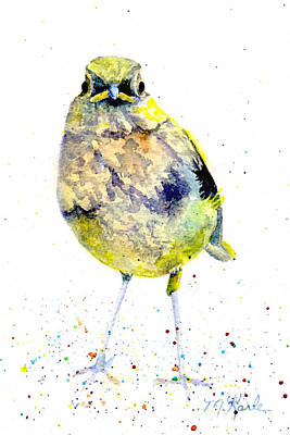Painting - Teenage Robin by Marsha Karle