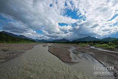 Photograph - Teklaneka River by David Arment