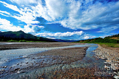 Photograph - Teklanika River by David Arment