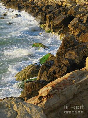 Photograph - Tel Aviv Beach by Donna Munro