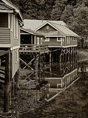 Photograph - Telegraph Cove 365-104 by Inge Riis McDonald