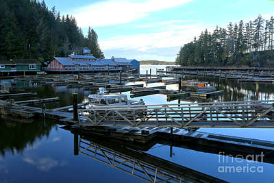 Photograph - Telegraph Cove Marina by Adam Jewell