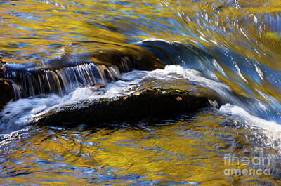 Art Print featuring the photograph Tellico River - D010004 by Daniel Dempster