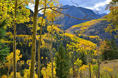 Photograph - Telluride Fall Colors by Ray Mathis