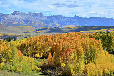Photograph - Telluride From Silver Pick Basin by Ray Mathis