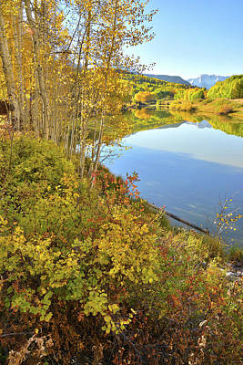 Photograph - Telluride Lake Reflection by Ray Mathis