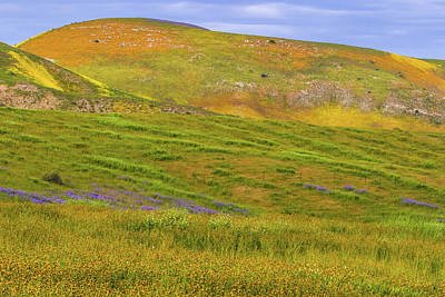Photograph - Temblor Range Spring Color by Marc Crumpler