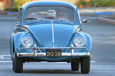 Photograph - Temecula Valley Bug by Bill Dutting