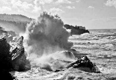 Photograph - Tempest by Sheila Ping